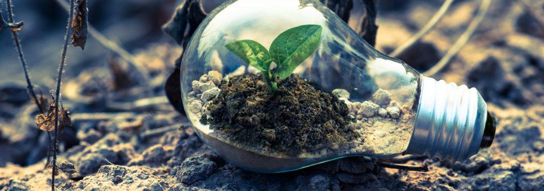 Ondernemer en groei