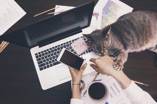 Tips voor de Thuiswerker: 6 Tips voor productief thuiswerken