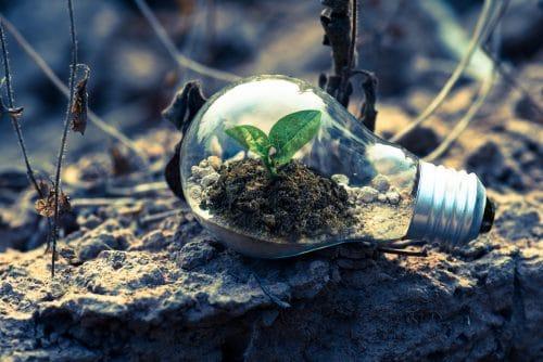 Ondernemer groei